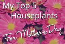 Mothering Sunday Ideas and Inspiration / Great ideas for Mothering Sunday (Mother's Day)