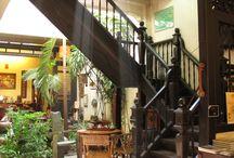My tropical house