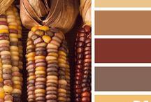 Colors Palletes