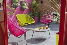 colour garden