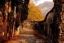 Seasons Autumn....