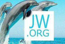 Getuige Van Jehovah