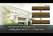 I will shew thee the bride, the Lamb's wife.