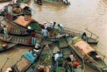 Mekong Delta / by Shannon
