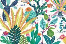 Floral Cactus Patterns