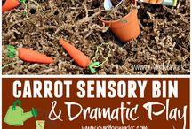 Secular Sensory Bin/Play / create fun sensory bins or play with these ideas.