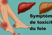 Santé foie