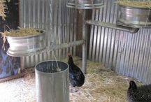 chiken coops :)