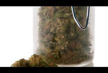 Cannabis / Anything About Medical Cannabis