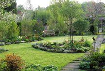 Garten Tipps