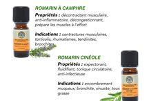 Aromathérapie / Présentation des huiles essentielles bio produites en Occitanie