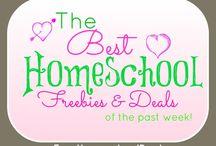 homeschool? / by Marisa O'Connor