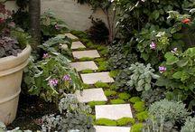Garden Paths and Patios / Garden paths and patio using a variety of materials