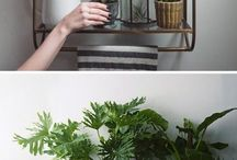 Home styling - Plants