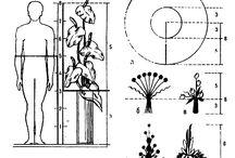 design floral structure