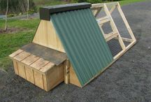 chicken coop