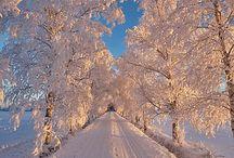 Zimni foto