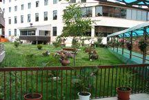 Phoenicia Apartments Baneasa