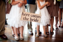 Wedding Signs / by Top Shelf Events