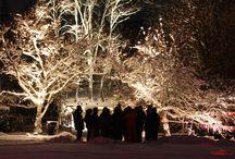 Noël à Saint-Amarin / Découvrez la magie de Noël par des escapades alliant le charme de l'Alsace à l'authenticité montagnarde.