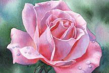 Art - Flowers - Roses