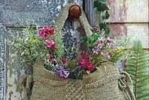 Beautiful Flowers / by Svetlana Timoshenko