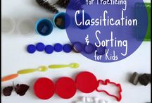 Sorting and Classifying activities