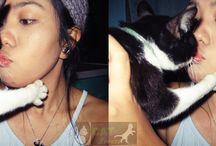 Cats and Princess