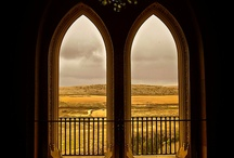 A View From A Window / by Sari