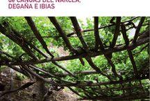 Vino y viñedo de Asturias