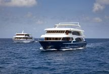 WELCOME TO MALDIVES WITH LUXURY YACHT MALDIVES / Exploring the Maldives islands, visiting the atolls, the desert islands and the coral reefs on comfortable and fully equipped boats, is an extraordinary and unique experience. You will discover a new world. Experience the marine world in great comfort on prestigious motor yachts; all provided with the necessary technical equipment and of highly qualified staff offer all their support to the most demanding divers. All that, perfectly combined with top class hospitality and comfort.