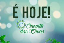 ismelucas@gmail.com