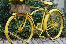 Bahçede bisiklet