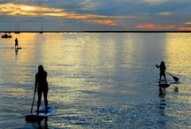 Hilton Head / by Carrie Tovornik