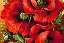 vereda de flores