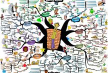 Adam Sicinski / Mind maps created by Adam Sicinski. More mind maps can be found @ www.IQmatrix.com / by IQ Matrix