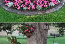 Fák köré virágot
