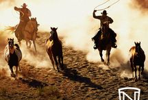 Western / #Western #NobleOutfitters