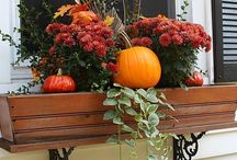 Autumn decorations outdoors