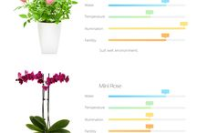 """Xiaomi Plants Monitor Flower Tester / Xiaomi Plants Monitor Flower Tester Only 9.99$ + Coupon code """"AGPA31"""", expired on 9th August. Get one now>> https://www.cafago.com/en/cell-phones-2479/p-pa3850.html?aid=Lss568"""