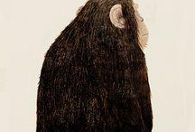 猴子手绘形象