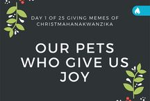 25 Days of Chrismashanakwanzika 2015 / 25 Days of Winter Holiday Memes to Brighten Up Your Patientworthy Day!