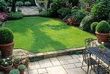 Landscape backyard