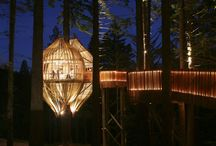 Tree Houses & Cabins / by Amy Gonzalez
