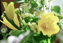 入賞作品『春を感じる花』フォトコンテスト / https://greensnap.jp/contest/81