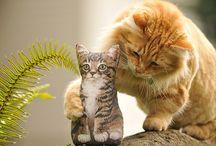 ihanat eläimet / suloisia pentuja ja muita hauskoja eläimiä