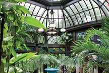 zimni zahrady conservatory