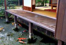 Water Bonsai Koi