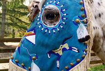 Hevonen - Horse / Erilaisia kohdalle osuneita poimintoja