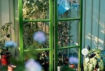 TRÄDGÅRD: Växthus